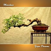 Yoga Dreams by Various Artists