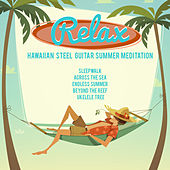 Relax, Hawaiian Steel Guitar Summer Meditation: Sleepwalk, Across the Sea, Endless Summer, Beyond the Reef, Ukulele Tree by Various Artists