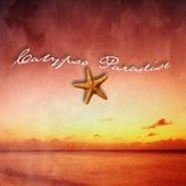 Calypso Paradise by David Shelley