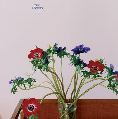 3 weeks by Tiga