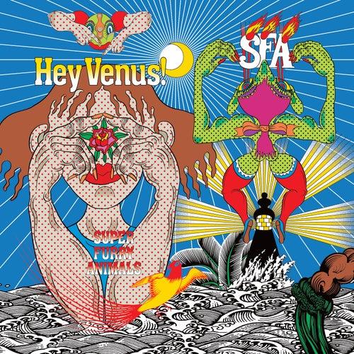 Hey Venus! by Super Furry Animals