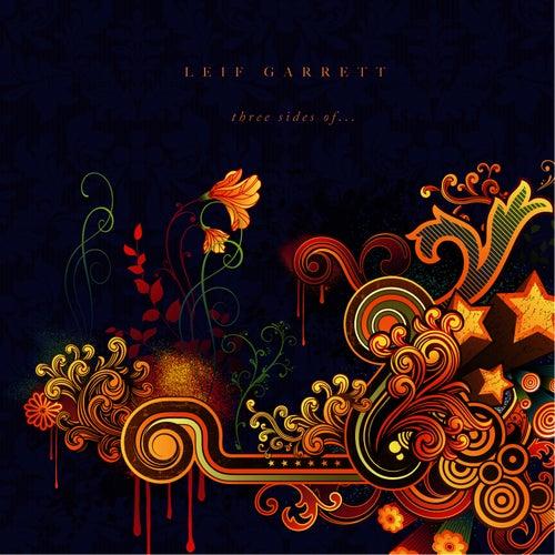 Rock Your Idol by Leif Garrett