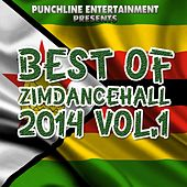 Best of Zimdancehall 2014, Vol. 1 (Punchline Entertainment Presents) von Various Artists