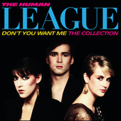 Don't You Want Me / The Collection by The Human League