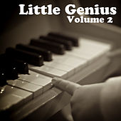 Little Genius Vol 2 by Various Artists
