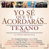 Yo Sé Que Te Acordarás Texano (Vol.2 / 20 Temas Originales) de Various Artists