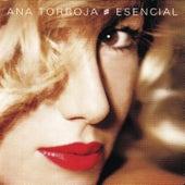 Esencial de Ana Torroja