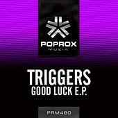Good Luck E.P. by The Triggers