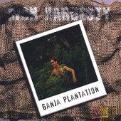Ganja Plantation de Rich Hardesty