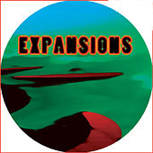 Expansions feat Roy Ayers by Scott Grooves