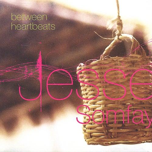 Between Heartbeats by Jesse Somfay