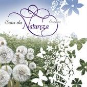 Sons da Natureza - Sonhos de Various Artists