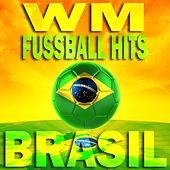 WM Fussball Hits Brasil (Best of Copa Penalty Dance Grooves) by Various Artists