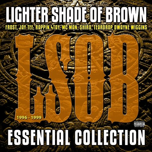 Essential Collection 1996 - 1999 by A Lighter Shade of Brown