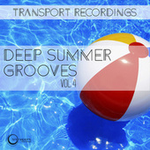 Deep Summer Grooves Vol. 4 von Various Artists