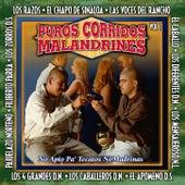 Puros Corridos Malandrines, Vol. 1 de Various Artists