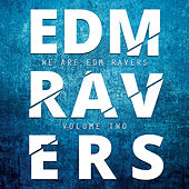 EDM Ravers, Vol. 2 by Various Artists