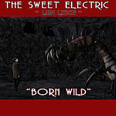 The Sweet Electric - Born Wild by Liam Lynch