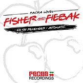 Do You Remember /Automatic by Fisher