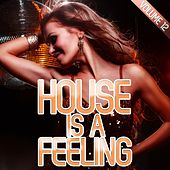 House Is a Feeling, Vol. 12 von Various Artists