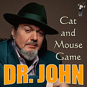 Cat and Mouse Game by Dr. John