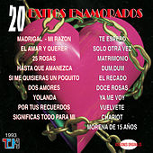 20 Éxitos Enamorados de Various Artists