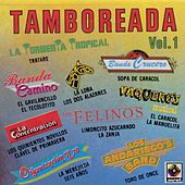 Tamboreadas Vol.1 by Various Artists