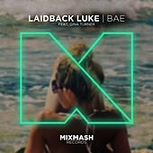 Bae (feat. Gina Turner) von Laidback Luke