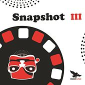 Snapshot III von Various Artists