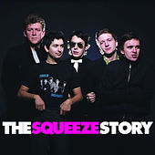 The Squeeze Story de Squeeze