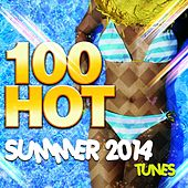 100 Hot Summer Tunes 2014 by Various Artists