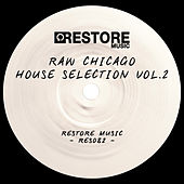 Raw Chicago House Selection, Vol. 2 de Various Artists