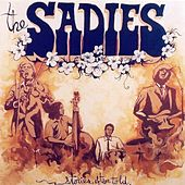 Stories Often Told by The Sadies