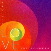 Endless Love von Joe Goddard