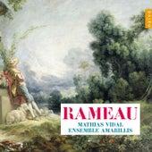 Rameau de Ensemble Amarillis