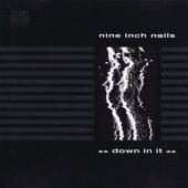 Down In It de Nine Inch Nails