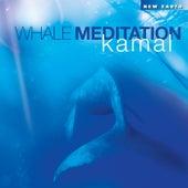 Whale Meditation de Kamal
