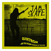 Jamskate EP by Quintron
