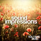 Sound Impressions, Vol. 14 by Various Artists