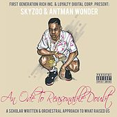 An Ode to Reasonable Doubt by Skyzoo