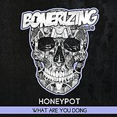 What Are You Doing by HoneyPot
