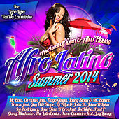 Afro Latino Summer 2014 by Various Artists