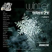 Winter Breeze Riddim de Various Artists