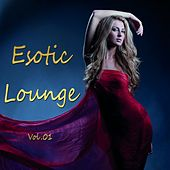 Esotic Lounge, Vol. 1 by Various Artists