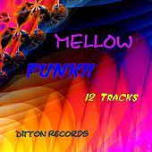 Mellow Funk de Various Artists