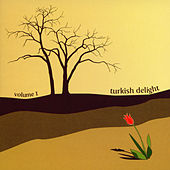 Turkish Delight - Volume 1 by Various Artists