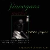 Finnegans Wake by Patrick Ball