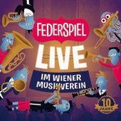 Live im Wiener Musikverein von Federspiel