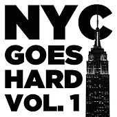 NYC Goes Hard, Vol. 1: Real Hip Hop from New York's Best with DMX, Big L, Jadakiss, and More Kings of NY by Various Artists