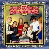 Puros Corridos Malandrines, Vol. 3 de Various Artists